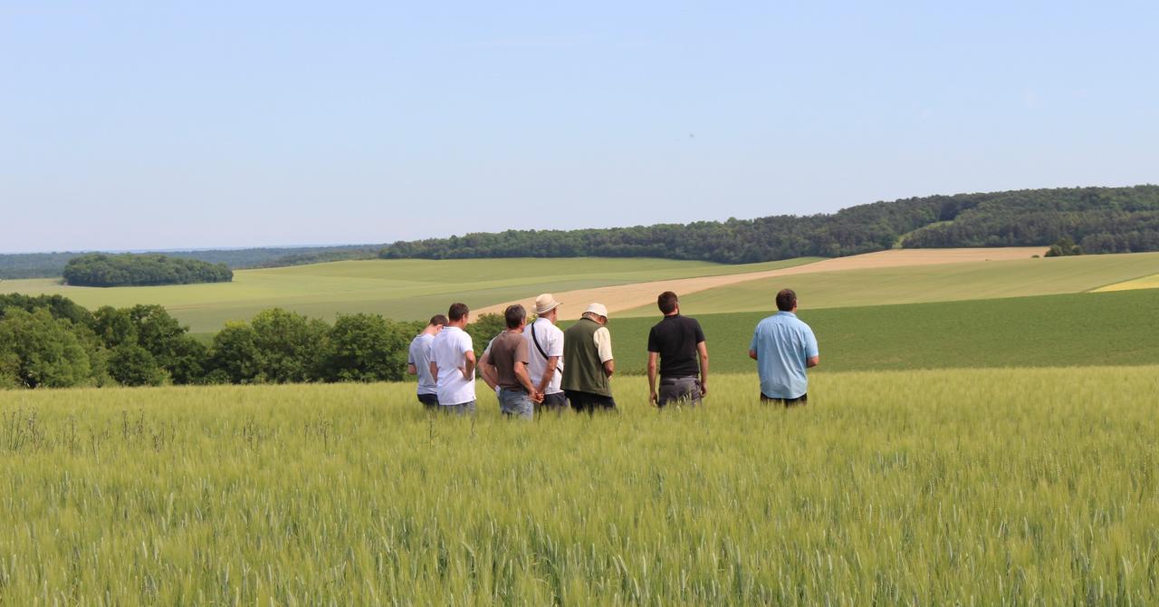 <i>Crédits Chambre d'Agriculture de Dordogne</i>